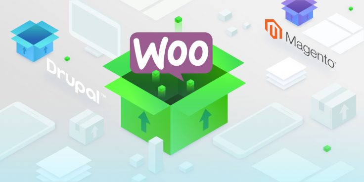 Maxpay Released a New Plugin for Merchants, Using WooCommerce Platform