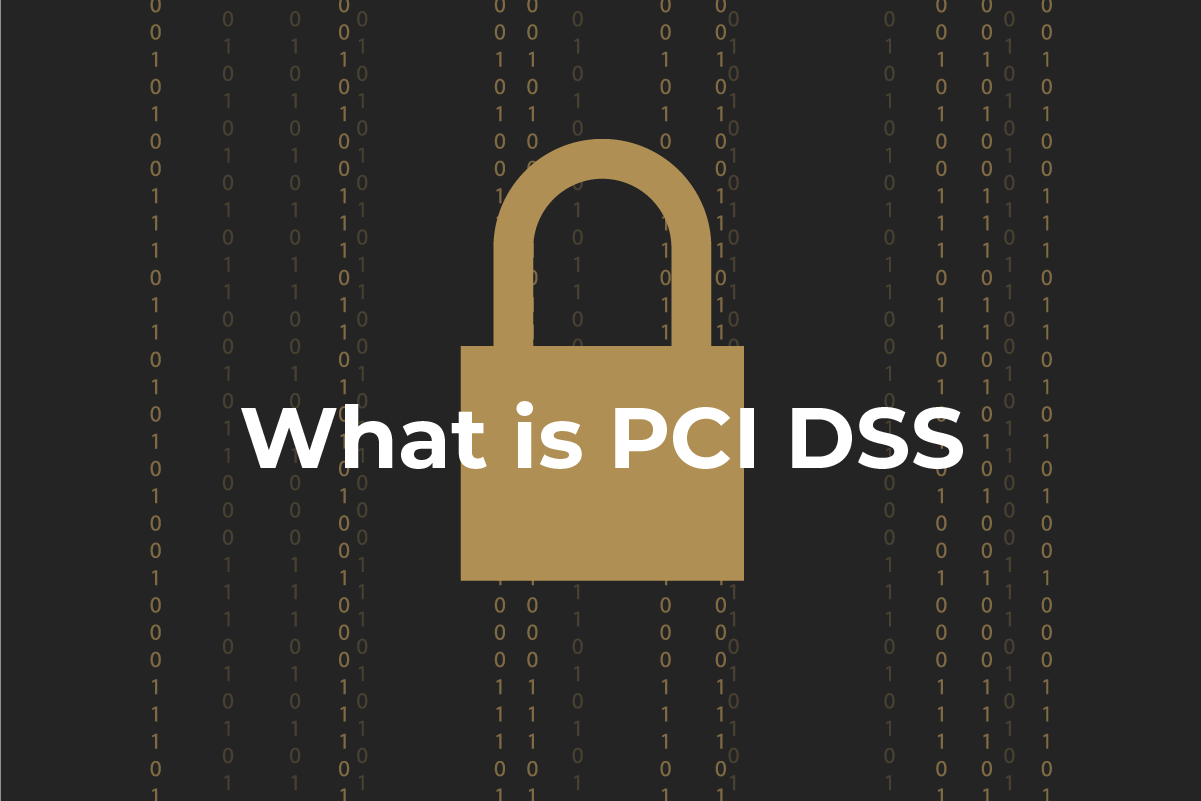 PCI DSS for merchants: the basics you should know