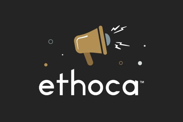 What are Ethoca alert services