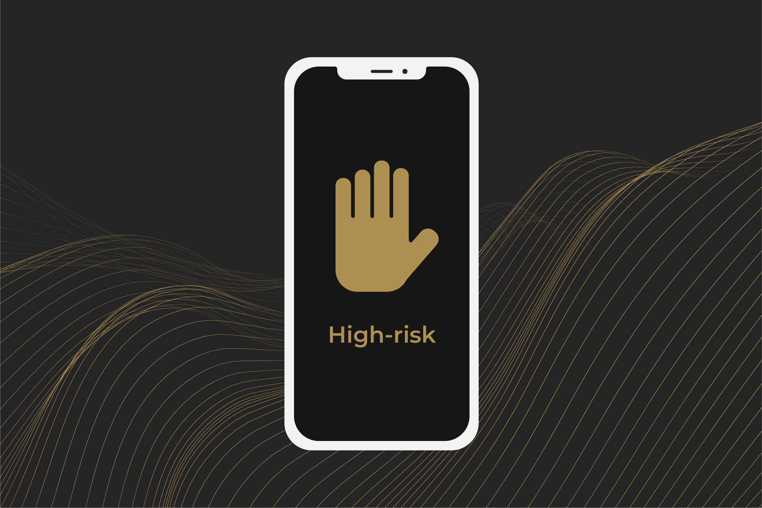 What is a high-risk merchant account?